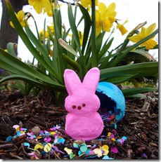 Easter Peeps Lin Pernille Photography