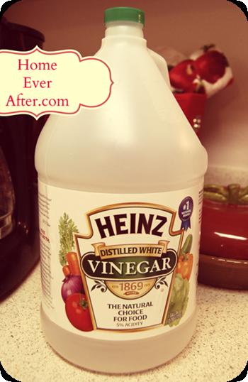Vinegar Heinz in Jug at Home Ever After