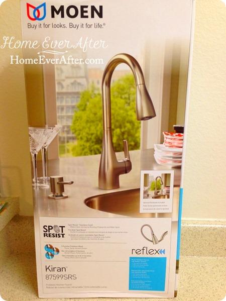 Moen Faucet DIY (2) WM-HEA