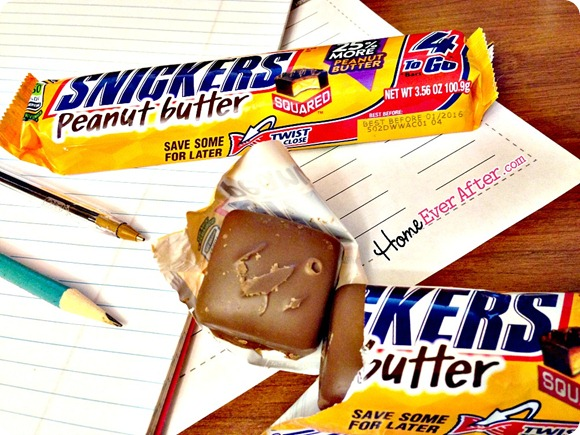 Snickers for Teachers Grading Papers